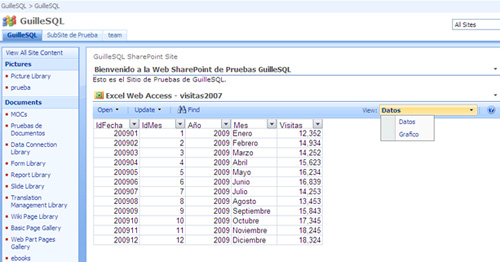 Utilización de Elementos con Nombre (Named Items) de Excel con Excel Services y Excel Web Access