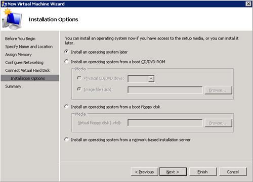 En la pantalla Installation Options, seleccionaremos la opción Install an operating system later