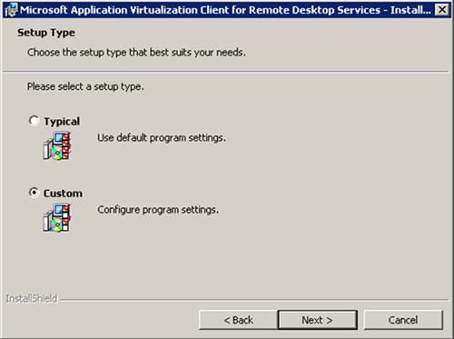 En la pantalla Setup Type, seleccionaremos el tipo de instalación Custom. Click Next para continuar