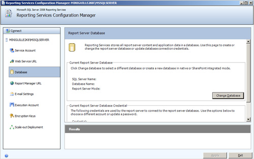 Report Server Database