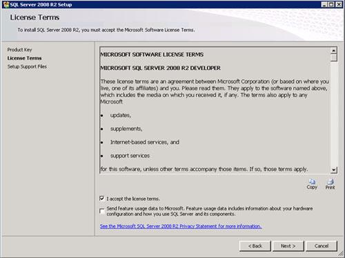 En la pantalla License Terms aceptamos los términos de licencia y click Next.